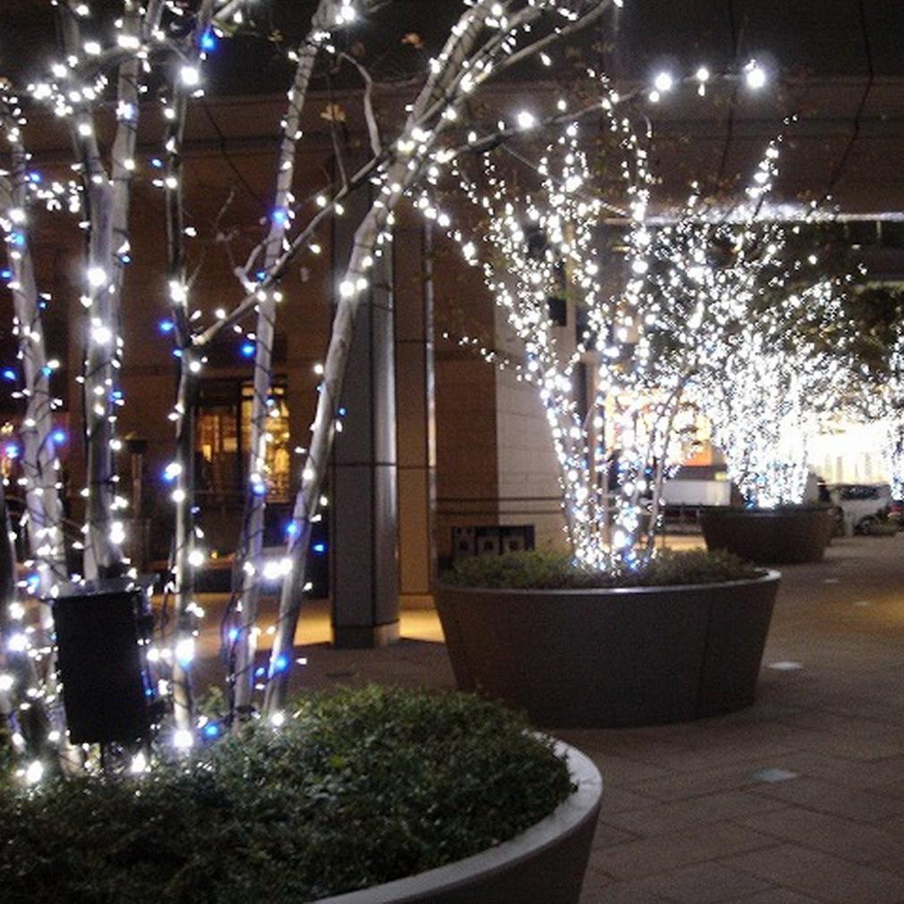 UK Christmas Garden Party String Fairy Light Battery